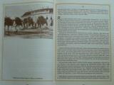 Polák - Čtení o Blansku 1848-1945 (1995)