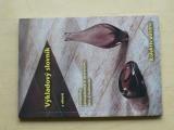 Výkladový slovník z oborů keramiky, žárovzdorného materiálu, skla a maltovin (2002)
