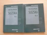 Do nitra Askiburgionu 19,20 - Encyklopedie Slezska I. II. (2002) 3 mapy