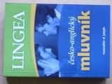 Lingea - Česko-anglický mluvník (2007)