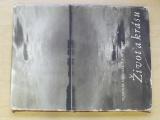 Hrouzek, Hrubý - Dát jižní Moravě vodu, znamená dát ji život a krásu (1952)