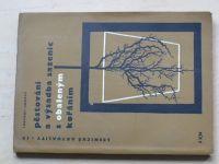 Lokvenc, Skoupý - Pěstování a výsadba sazenic s obaleným kořáním (SZN 1967)