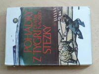 Nagiškin - Pohádky z tygří stezky (1980)