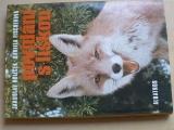 Holeček, Fischerová - Povídání s liškou (1978)