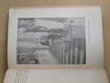 Perutz, Frank - Bílé cyklamy (Sfinx Janda 1928) il. Goth