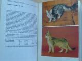 Vařejčko - Atlas plemen koček (1984)