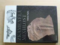 Fejfar - Zkamenělá minulost (1989) Vývoj života, zkameněliny