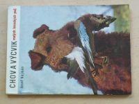 Najman - Chov a výcvik malých loveckých psů (1970)