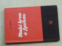 Kostič - Medzi hrou a fyzikou (1975) slovensky