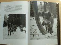Holeček, Nohejlová - Rytíři hlubokých lesů (1989)