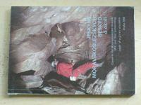Wagner - Jeskyně Moravskoslezských Beskyd a okolí (1990)
