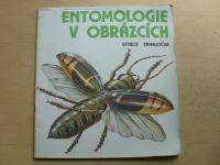Tanasijčuk - Entomologie v obrázcích (Raduga ´Moskva 1985)