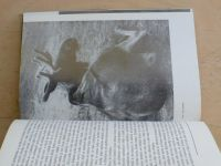 Mikula - Zvířata a jejich osudy (1972)