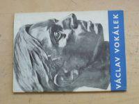 Hlaváček - Václav Vokálek - Podobizny (1959)