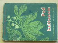 Malířová - Pod kaštanem (SNDK 1957) pohádky, il. Marešová