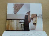 Birdová - Současný styl bydlení - Krása jednoduchosti (2004)