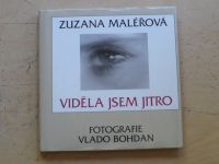 Maléřová - Viděla jsem jitro (2002)