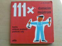 Slodowy - 111x domácim majstrom - Hračky, úžitkové predmety, praktické rady (1976)