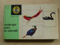 Veger - Cizokrajní ptáci na zahradě (1977)