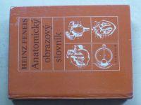 Feneis - Anatomický obrazový slovník (1981)