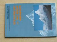 Mazura - Cesta do roku 2051 aneb Malé nepálské dobrodružství (1995)