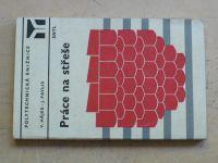 Hájek, Pavlis - Práce na střeše (1981)