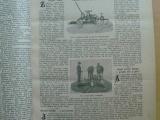 Hospodářský list 1905 - Rolnictví, hospodářský průmysl