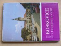 Bránský - Boskovice v proměnách času (1990)