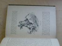 Albieri - Stráž na Rýně - Románový příběh z velké doby (1885)