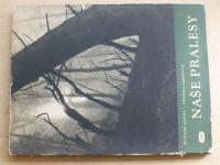 Janda - Naše pralesy (1950)