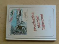 Přikryl, Matulová, Peterovi - Procházka starým Bílovcem (2000) dobové pohlednice