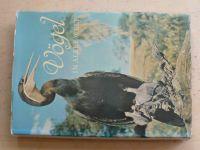 Robiller - Vögel in aller Welt (1978)