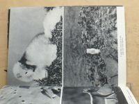 Puchalski - Sněžnou stopou (1965)