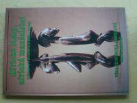 Šťovíčková-Heroldová - Africké lásky, africká manželství v životě a v zrcadle afrického umění (1994)