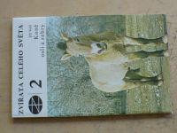 Volf - Zvířata celého světa - Koně, osli a zebry (1977)
