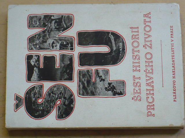 Šen Fu - Šest historií prchavého života (1944) il. Toyen