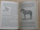 Prof. Skorochoďko - Hygiena hospodářských zvířat (1952)