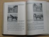 Speciální chov hospodářských zvířat - Velká zvířata (SZN 1961)