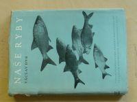 Dyk - Naše ryby (1956)