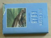 Šimek - Ryby našich vod (1959) kolorované fotografie