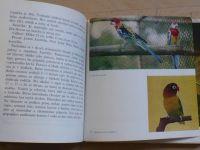 Dúha, Valenčík - Chov exotického vtáctva (1974) slovensky
