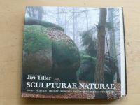 Tiller - Sculpturae Naturae - Schody přírody - Skultuten der Natur - Sculptures of Nature (2006)