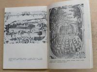 Malé Svatoňovice 1882 - 1982 - k 100. výročí osamostanění obce