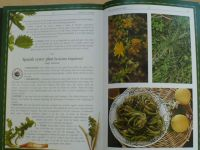 Maria & Nikos Psilakis - Herbs in cooking (anglicky) Byliny v kuchyni