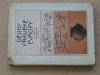 Buchvaldek - Dějiny pravěké Evropy (1985)