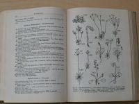 Dr. Dostál - Klíč k úplné květeně ČSR (1956)