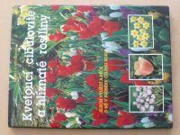 Noordhuis - Kvetoucí cibulovité a hlíznaté rostliny (1997)