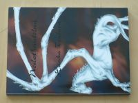 Toulavá - Nedotknutelná (2009)
