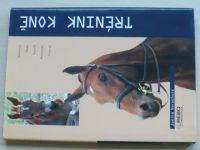 Verschure - Trénink koně (2004)