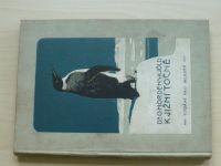 Dr. Nordenskjöld - K jižní točně (1913) Dva roky ve sněhu a ledu